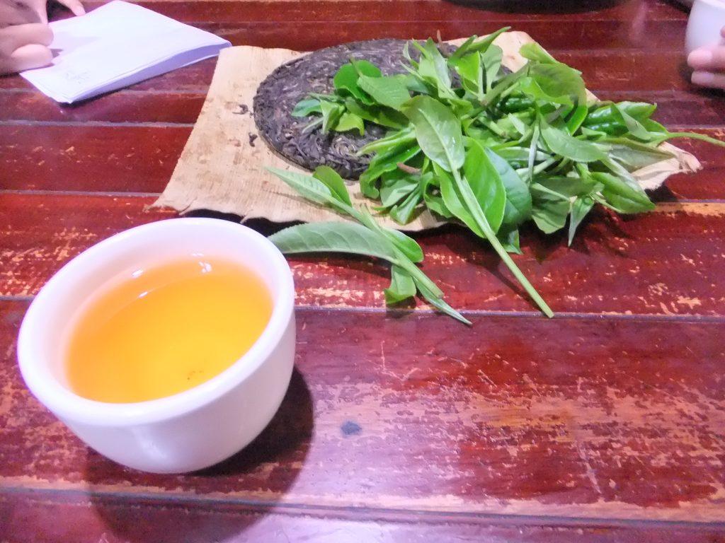 基諾山はプーアル茶茶の産地としても有名