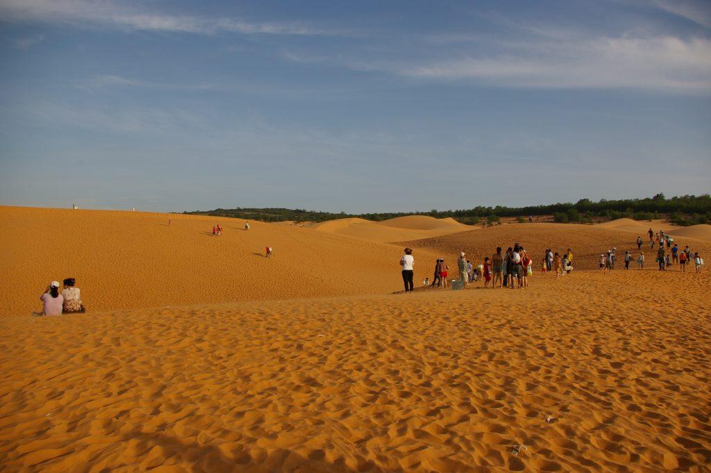 イエローサンドデューン(黄色い砂の砂丘)